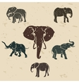 Elephants set vector image vector image