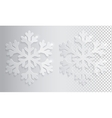Glass transparent snowflake Christmas vector image vector image