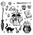 halloween elements magic ball witch with book of vector image