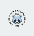line style raccoon face with retro typography vector image vector image