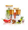 spices 3d composition vector image