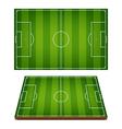 Soccer Fields Striped Grass vector image