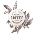 coffee paper emblem vector image