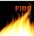 Fire realistic background vector image vector image