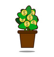 money tree with golden coins tree in pot vector image