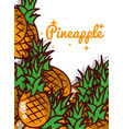 pineapple fruit juicy sweet poster vector image