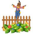 Scarecrow in the garden vector image vector image