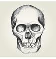 sketch a human skull vector image vector image