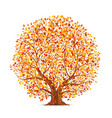autumn tree vector image