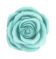 beautiful blue rose floral decorative vector image