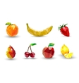 Fruit set of polygons vector image vector image