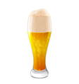 glass of beer vector image vector image