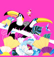 graphics color funny birds toucans vector image vector image