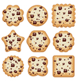 Set of cookies vector image