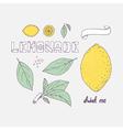 Set of hand drawn elements for lemonade or soda vector image