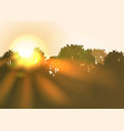 sun rise with bright sunbeams an trees vector image vector image