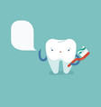 tooth is brushing with toothbrush dental concept vector image