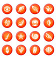 tropical sea shell icons set red vector image vector image