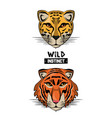 wild animal print for t shirt vector image