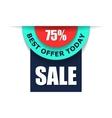 75 sale advert flat vector image