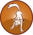 angry wild dog or wolf barking vector image vector image