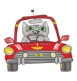 Cat on the car vector image vector image