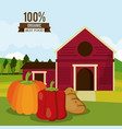 Colorful poster of organic best food with farm vector image