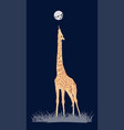 coloured giraffe vector image vector image