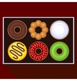 Donuts Collection Icons Set in Box vector image vector image