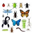Set of Various Insects Design Flat vector image