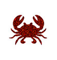 crab spiral pattern color silhouette aquatic vector image