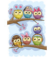 cute owls is sitting on a branches vector image vector image