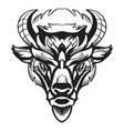 head mascot bison isolated on white vector image