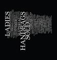 ladies handbags text background word cloud concept vector image vector image
