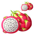 pitaya dragon fruit fruit cartoon icon vector image vector image