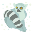 ring tailed lemur vector image vector image