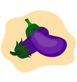 ripe eggplant on a beige background vector image