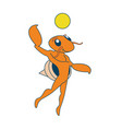 beach volley hermit crab vector image vector image