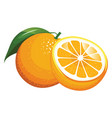 cartoon orange with a green leaf orange and vector image vector image