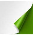 Curled corner of White paper on Green Background vector image vector image