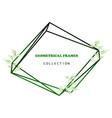 floral elegant botanical card design vector image vector image