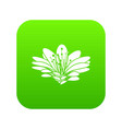 flower icon green vector image vector image