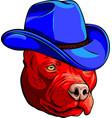 head pitbull with fedora hat vector image