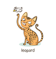 Leopard cat Cat character isolated on white vector image vector image