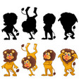 lion with its silhouette vector image vector image