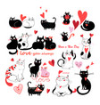 set enamored cats vector image