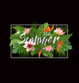 summer tropical holiday background with exotic vector image vector image