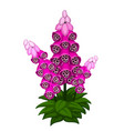 bright sprig of lilac flowers isolated vector image vector image