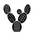 bunny ears cactus glyph icon opuntia microdasys vector image vector image