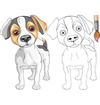 Coloring Book of Jack Russell Terrier
